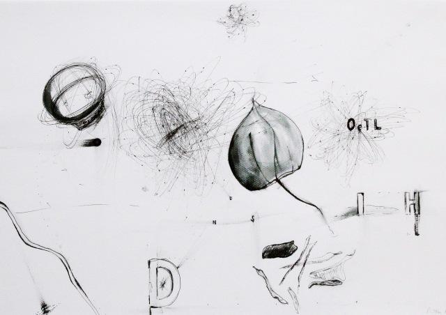 © Wilhelm Roseneder. Getrocknetes Leben, 2012. Zyklus Notizen:Notes. Gelpen auf Papier, 29,6x41,9 cm