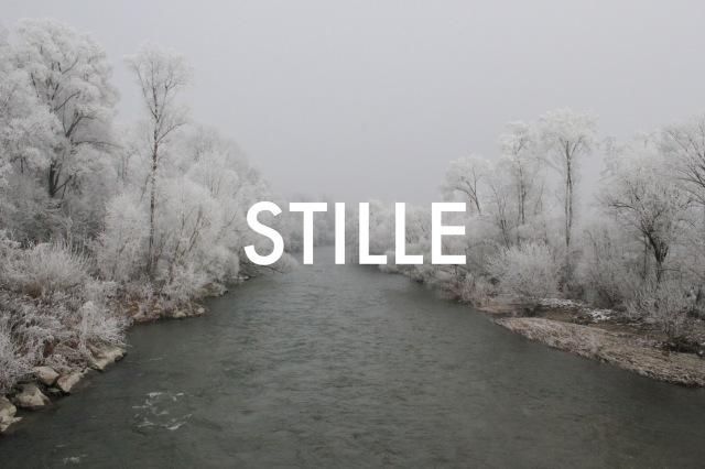 © Wilhelm Roseneder. STILLE Nr. 20121, 2013