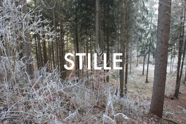 © Wilhelm Roseneder. STILLE Nr. 20361, 2013