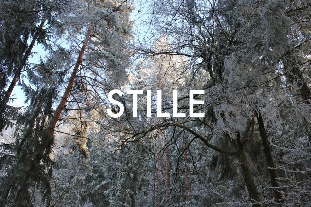 © Wilhelm Roseneder. STILLE Nr. 11130, 2013